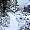 Tumalo Falls Trail
